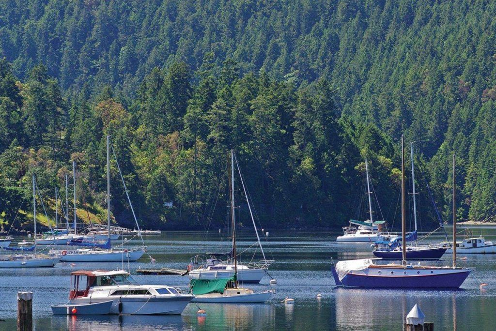 Brentwood Bay boaters challenge District for the bay