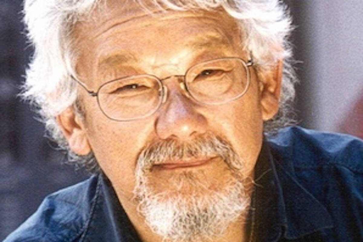 DAVID SUZUKI: What do we do when the cathedral burns